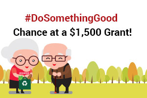 American Advisors Group - Do Something Good Grant